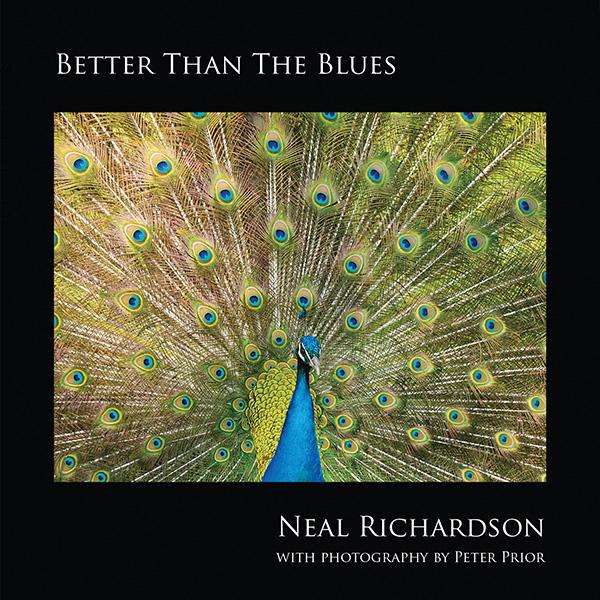 Neal Richardson | Pianist, Vocalist & Songwriter